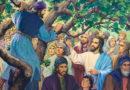Проповідь на неділю Закхея