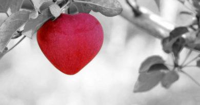 Любов, пристрасть чи захоплення?