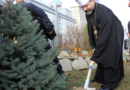 Блаженніший Святослав закликає відмовитися від зрубаних живих ялинок з нагоди новорічних та різдвяних свят