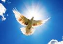 «Прийди та вселися в нас»…