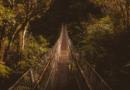 Жінка на мості