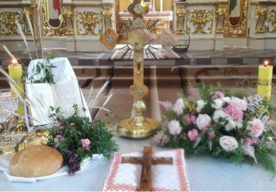 Свято Пресвятої Євхаристії у Прокатедральному Соборі Благовіщення Пресвятої Діви Марії (фото)